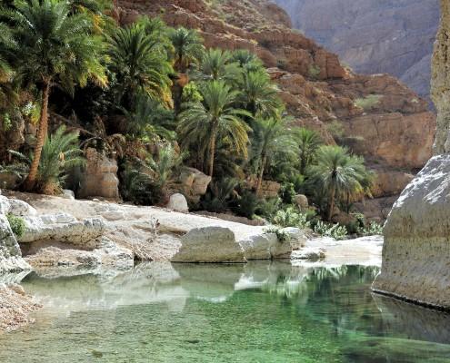 Wadi Shab, oasis, between the mountains, Oman