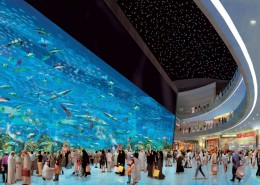 MODERN DUBAI CITY TOUR WITH AQUARIUM & AT THE TOP AND 3 HOURS SHOPPING